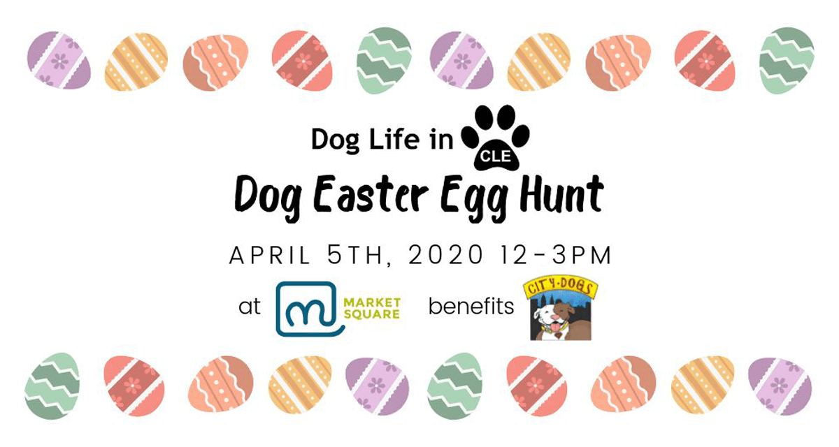 3rd Annual Dog Easter Egg Hunt